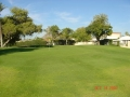 GolfCourse_06