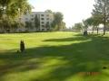 GolfCourse_08